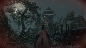 Sekiro Shadows Die Twice (46)