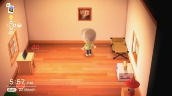 Animal Crossing New Horizons - 43