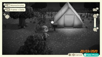 Animal Crossing New Horizons - 73