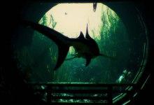 Photo of Torne-se o maior predador dos mares em Maneater, o primeiro shARkPG