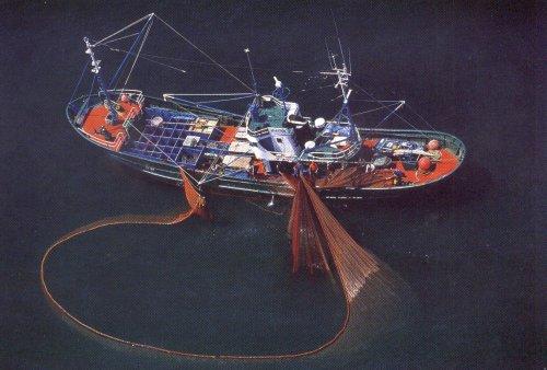 Novas regras para a emissão de Carteira de Pescador Profissional