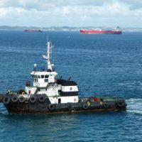 Técnico vem a óbito após acidente a bordo de rebocador da Wilson Sons em São Francisco do Sul