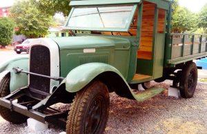 whippet 1928 piribebuy