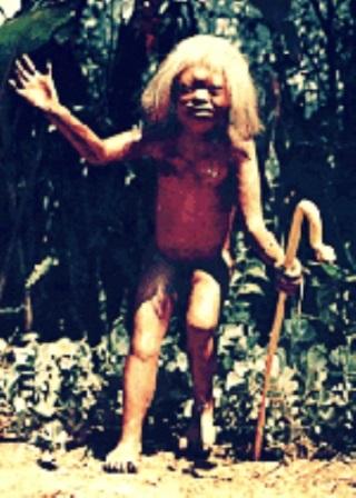 los mitos del paraguay jasy jatere