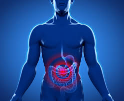 Grande parte das doenças gastrointestinais são causadas por falta de saneamento básico