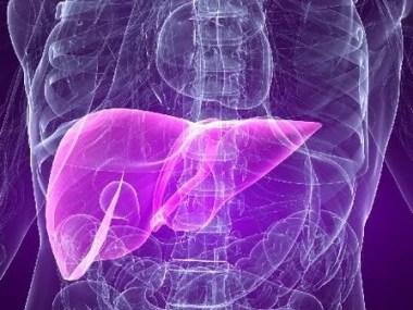 Campanha contra as hepatites