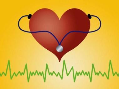 Colesterol elevado pode ser controlado com uma boa alimentação