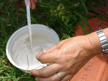 Municípios baianos recebem R$3,7 milhões para combater Dengue e Chikungunya