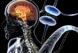 Neupro trata o Mal de Parkinson