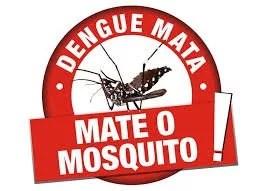 Plano de combate ao mosquito da dengue em PE