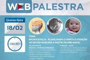 Webpalestra sobre microcefalia