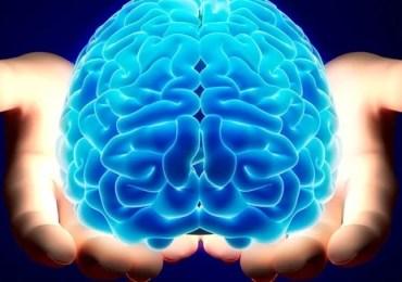 Hoje, (22/07) é  o Dia Mundial do Cérebro