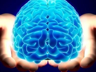 Conheça os mitos e verdades sobre a doença de Alzheimer