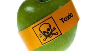 Imunologista alerta para o perigo invisível do agrotóxico