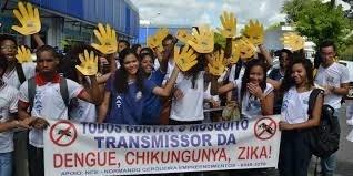 Colégio Anísio Teixeira no combate a dengue