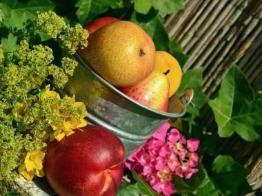 Vitamina A e a saúde
