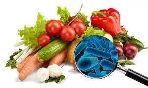 Contaminação de alimentos por metais pesados