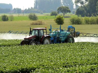 Justiça francesa reconhece primeiro caso de Parkinson causado por pesticidas