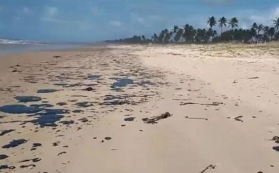 Manchas de óleo aumentam no litoral do nordeste