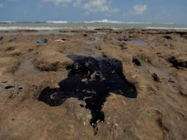 Vereadores de Salvador farão uma visita as praias atingidas por óleo