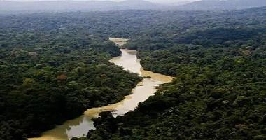 Queimadas na Amazônia e Pantanal serão proibidas por 120 dias