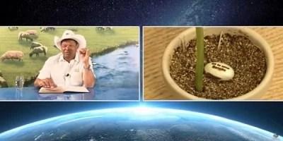 MPF quer que pastor pague indenização por prometer cura da covid-19