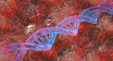Cientistas da USP concluem maior análise de material genético de idosos da América Latina