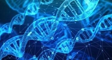 As mutações genéticas perigosas ou acidentais que podem mudar o futuro da humanidade