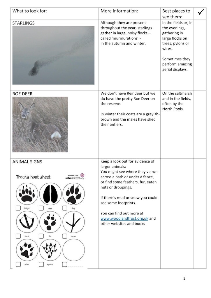 Winter trail page 5