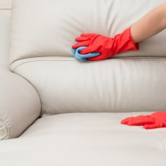How To Clean Leather Sofas Sofa Beds On Gumtree Norfolk Mold Doesn T Have Be The Death Of Your Couch