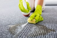Get Rid of Those Old Pet Stains From Your Carpet
