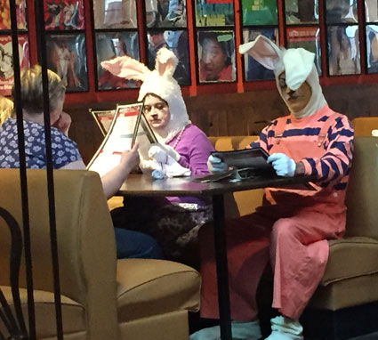 bunny-dinner