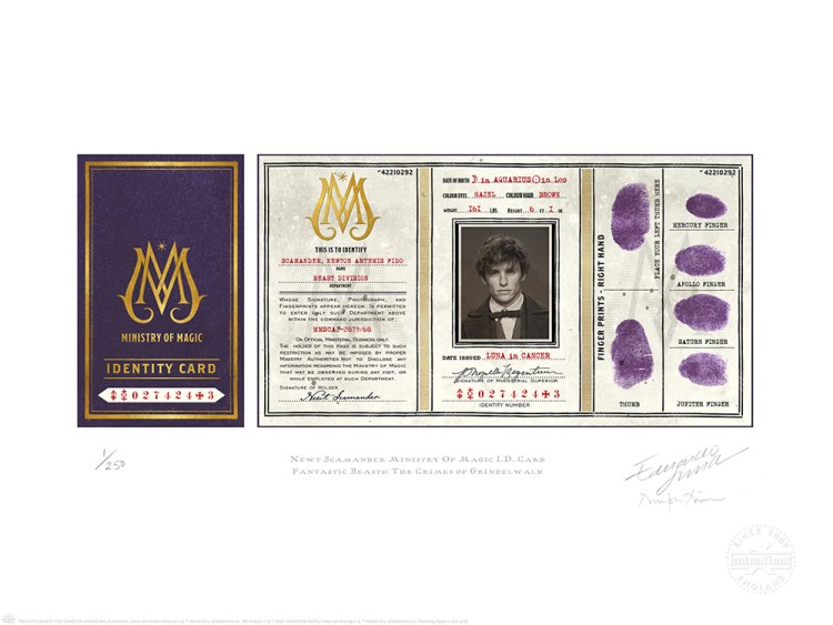 NEWT_SCAMANDER_MINISTRY_OF_MAGIC_ID_CARD_MINALIMA