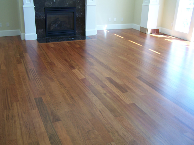 Maple with Nutmeg stain  Portland Hardwood Flooring