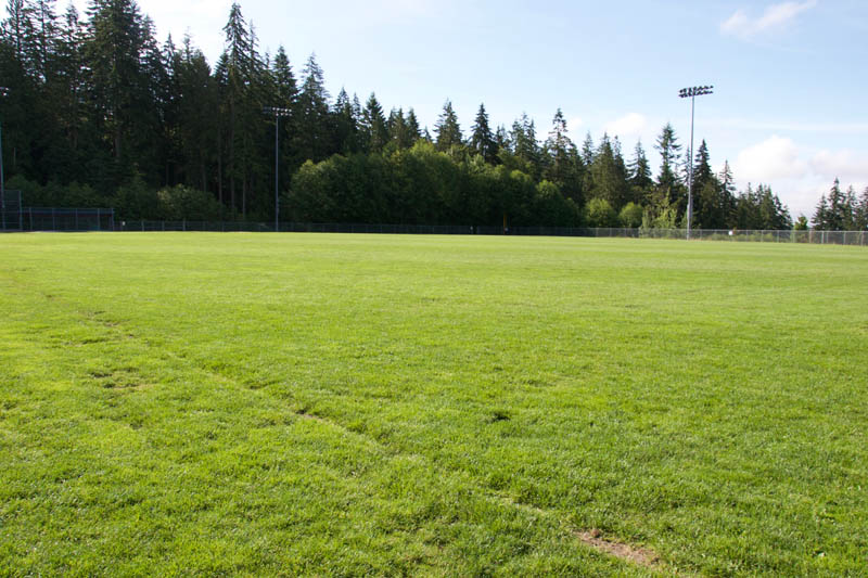 North Shore Grass