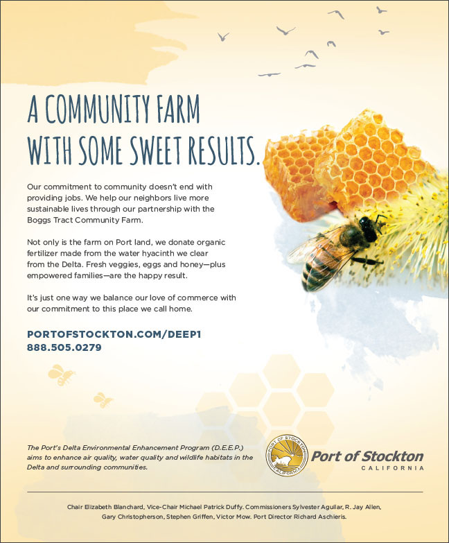 Community-Farm-Sweet-Results