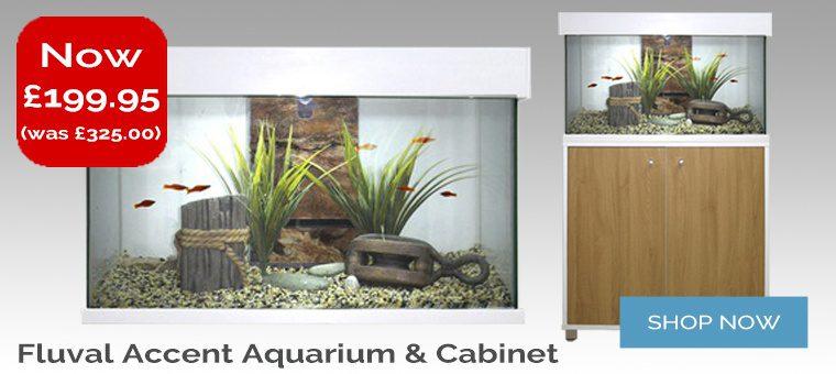 Fluval Accent 95l Aquarium & Cabinet