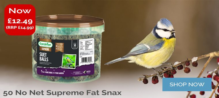 No Net Supreme Fat Snax 50 Offer