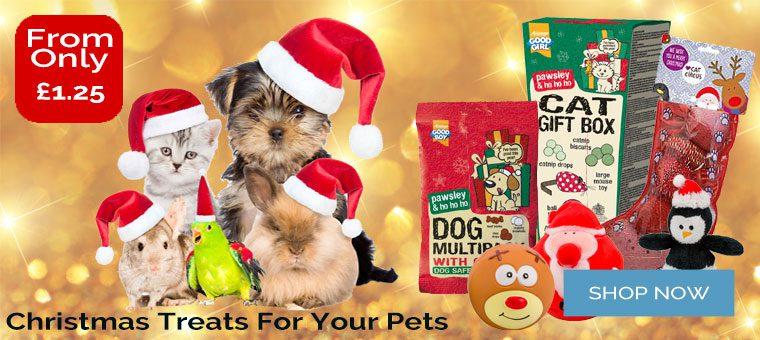 Pet Christmas Offer