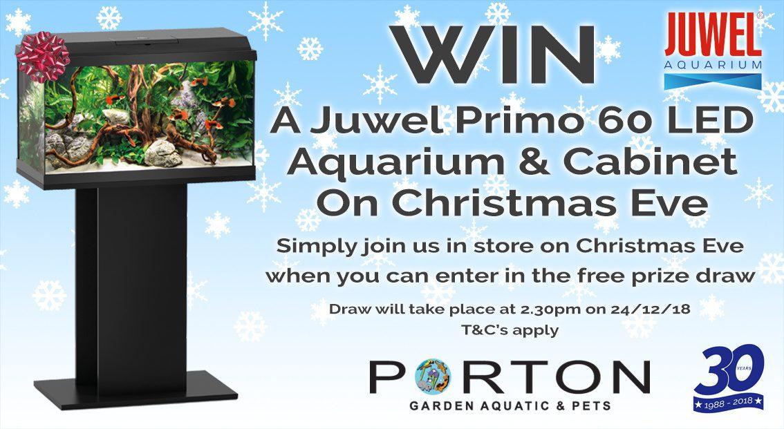 Win Juwel Primo