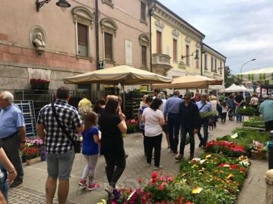 Adria in fiore Piazza Grotto