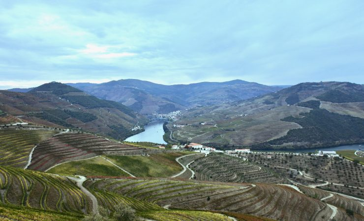 How to Visit The Douro Valley – by car, train or boat?