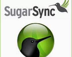 SugarSync Free