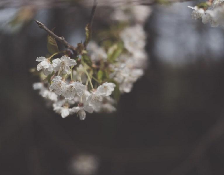creativity and the seasons