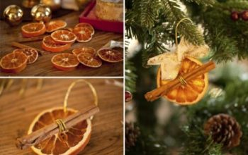 Amazing Dried Fruit Christmas Ornaments
