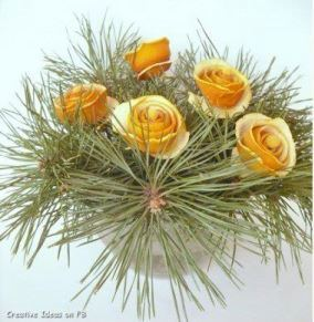 dried orange peel roses