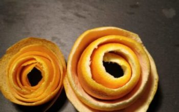 How to make Romantic Orange Peel Roses: Step by Step photo instructions