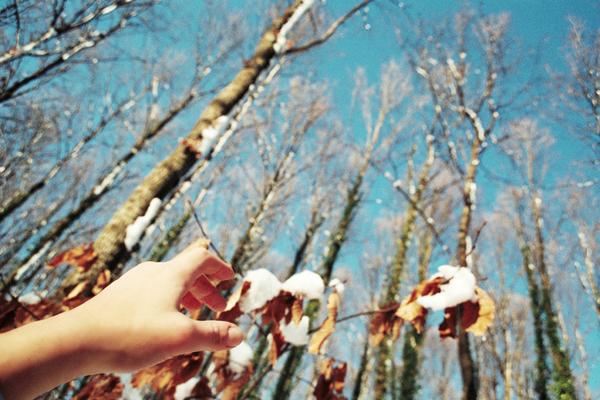 snowhand-wb