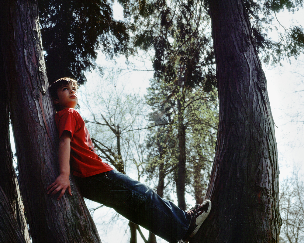 Izak-in-Trees