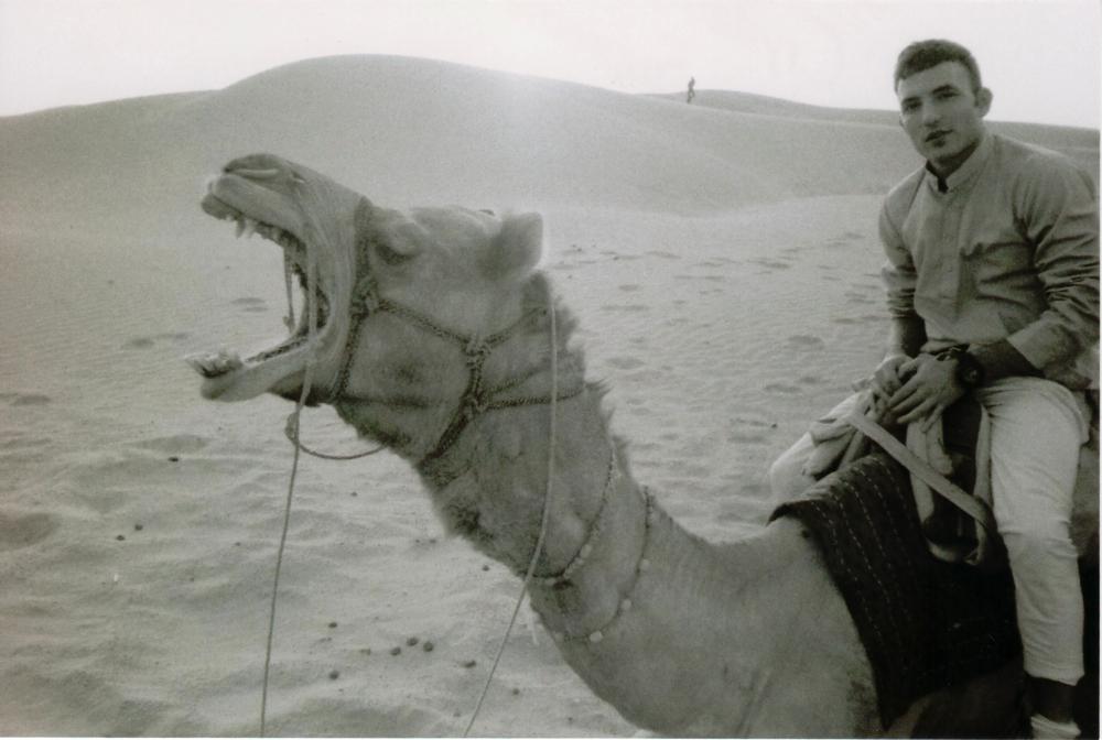 thar desert4